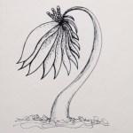 Flowerosity sketch #50