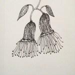 Flowerosity sketch #67