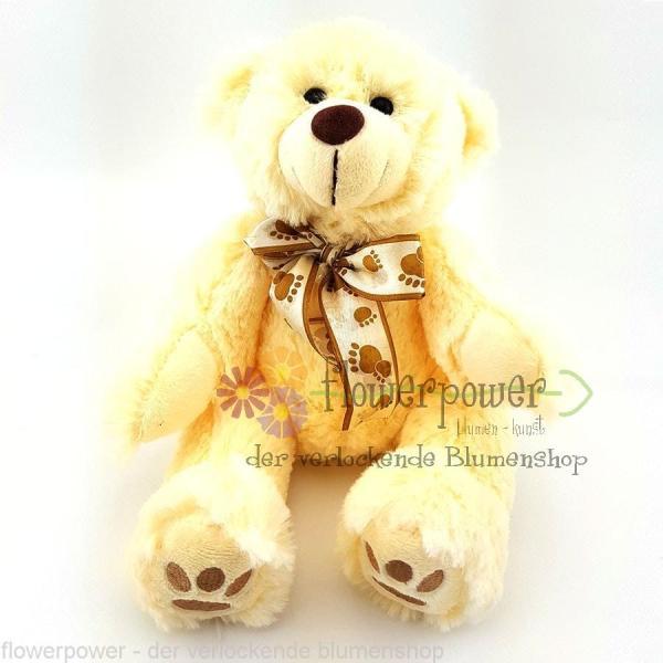 Teddybär weiss
