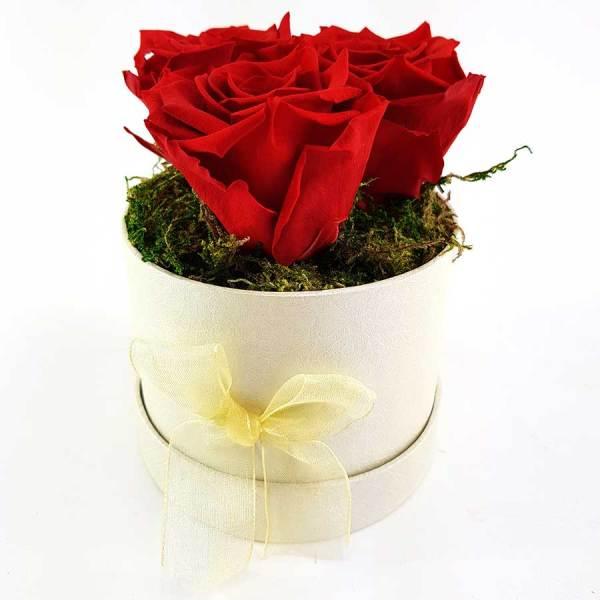 Ewige Rosen 3er Rot
