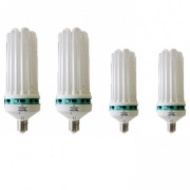 Lampade a Basso Consumo CFL