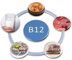 B12-1
