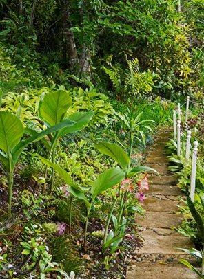 159-Summit-Garden-path