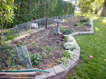 Empty garden bed