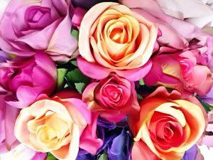 Peach, Mauve roses in bright bouquet