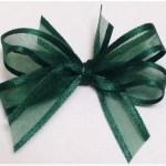 Dark green organza ribbon