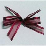 Burgundy organza ribbon with satin edge