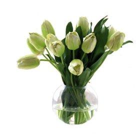 Tulip Bubble Bowl Color: Green