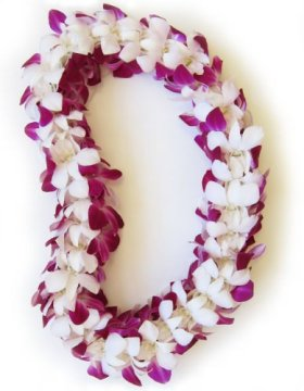 Fresh Hawaiian Lei – Double Orchid Leilani