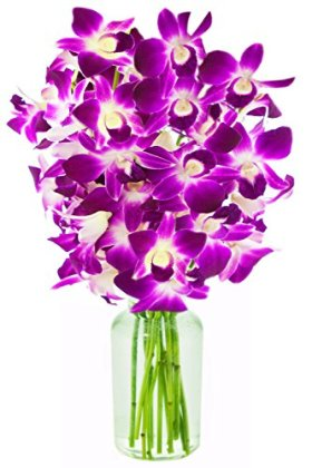 Ultimate Purple Dendrobium Orchid Bouquet (10 stems) – With Vase