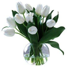 Tulip in Bubble Bowl Color: White