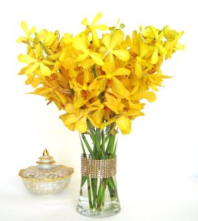 Fresh Flowers – Yellow Mokara Ordhids with Vase