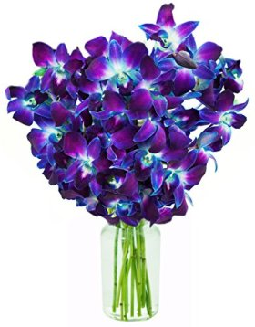 Blue Orchid Fresh Flower Bouquet (10 Stems) – With Vase