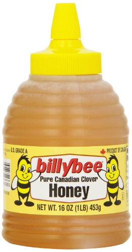 Billly Bee Honey Liquid Squeeze Beehive, 16-Ounce (Pack of 6)