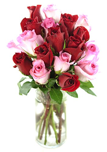 Bouquet of Long Stemmed Red and Pink Roses (Dozen and a Half) – With Vase