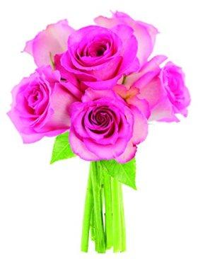 Bouquet of Long Stemmed Pink Roses (Half Dozen) – Without Vase