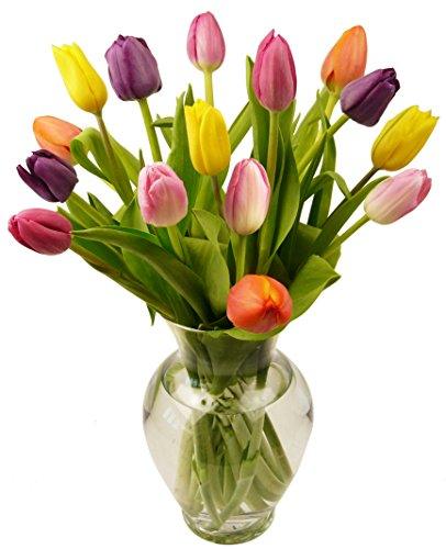 Multi-Colored Tulips, With Vase