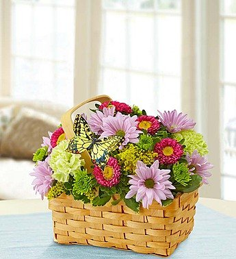1-800-Flowers – Spring Inspiration – Small