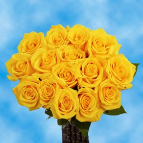 Fresh Cut Roses 50 Yellow Roses