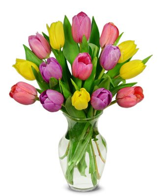 From You Flowers – Spring Tulip Bouquet – 15 Stems (Free Vase Included)