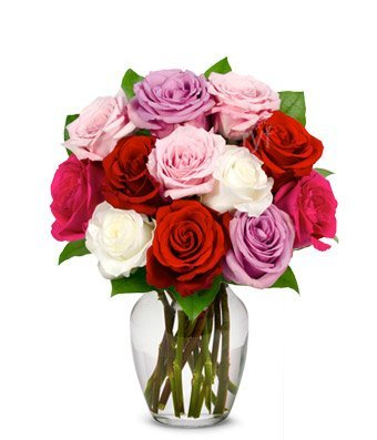 Prospect Flowers – Eshopclub Same Day Flower Delivery – Fresh Flowers – Wedding Flowers Bouquets – Birthday Flowers – Send Flowers – Flower Arrangements – Floral Arrangements – Flowers Delivered