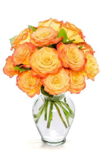 Benchmark Bouquets Dozen Orange Roses, With Vase