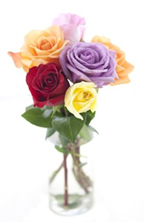 Bouquet of Long Stemmed Rainbow Roses (Half Dozen) – With Vase
