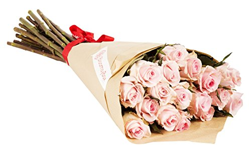 24 Long Stem Light Pink Rose Bouquet – No Vase