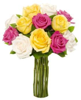 Benchmark Bouquets Dozen Vibrant Roses, No Vase