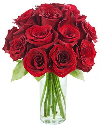 Red Rose of Passion Bouquet (One Dozen Long Stemmed) – With Vase