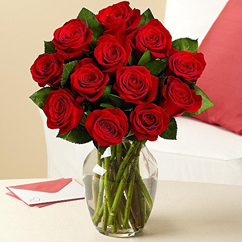Valentine's Day – Rose Elegance Premium Long Stem Red Roses – 12 with Free Vase