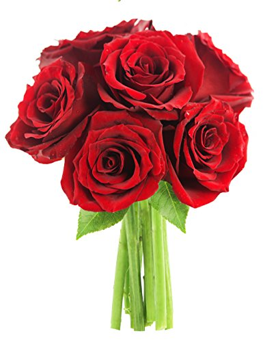 Bouquet of Long Stemmed Red Roses (Half Dozen) – Without Vase