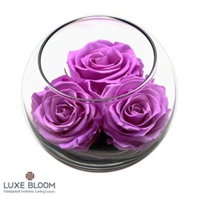 Luxe Bloom Orchid Preserved Roses | Lasts 60 days | Gorgeous Spring Flowers | 3 Orchid (purple) roses & greens in a 4″ glass bubble | Perfect gift for Mother's Day or any occasion