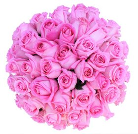 50 Mother's Day Farm Fresh Pink Roses Bouquet By JustFreshRoses | Long Stem Fresh Pink Rose Delivery | Farm Fresh Flowers