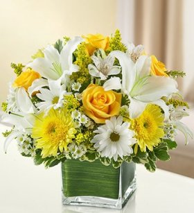1-800-Flowers – Healing Tears – Yellow and White – Large