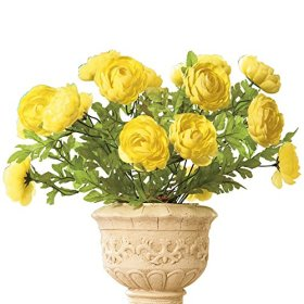 Full Blooming Ranunculus Bushes – Set Of 3 Yellow