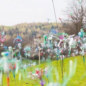 Exposition Flowers Of Change à Garges-lès-Gonesse
