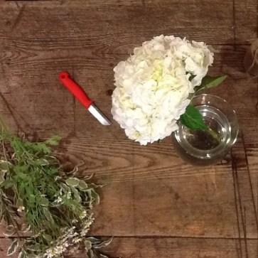 White hydrangea on workstation