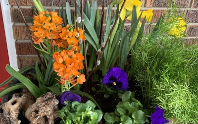 Make Your Own Outdoor Spring Planter