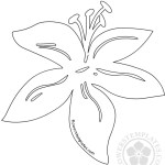 Lily single flower outline