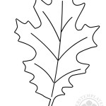 Oak leaf Autumn coloring page