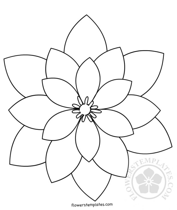 how to draw different shapes of flowers