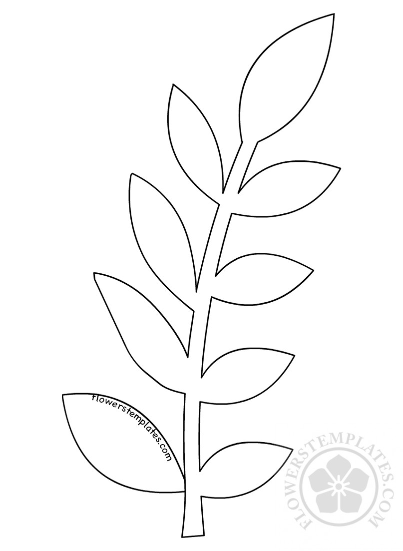 photo relating to Printable Leaf Pattern identify Flower Template Leaf Practice Bouquets Templates