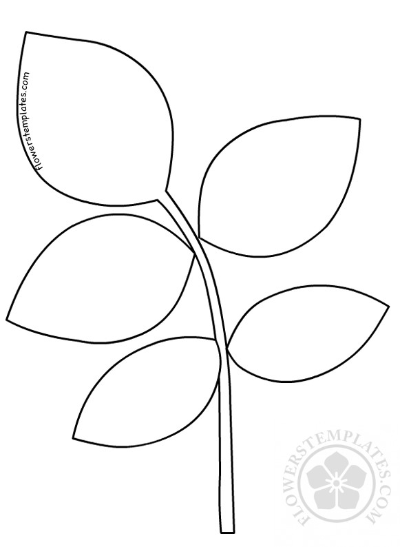 photograph about Printable Leaves Templates titled Rose leaf template Paper Rose Leaves Bouquets Templates