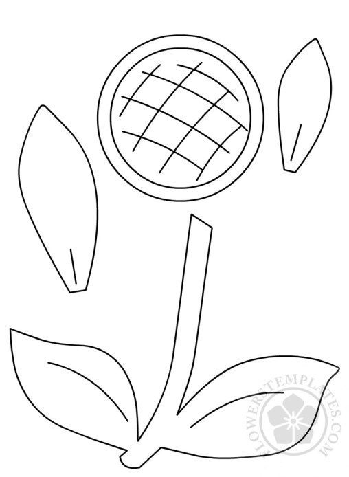 Sunflower Flowers Templates