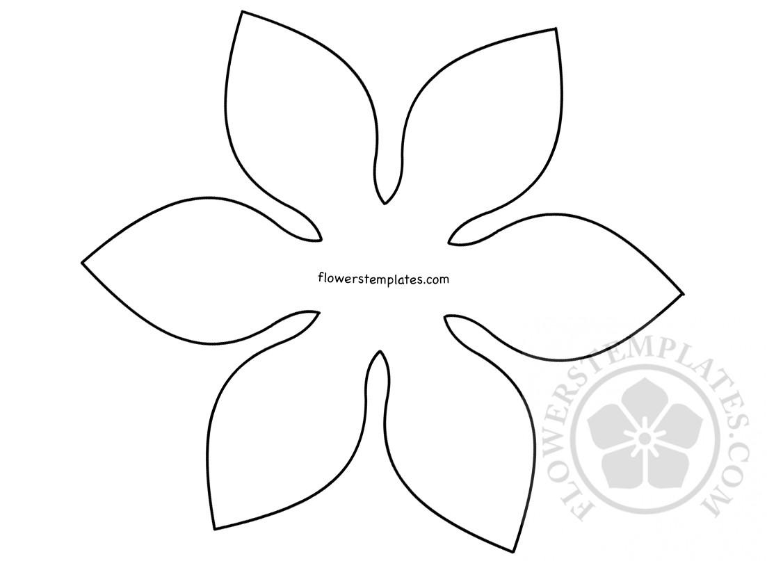Large Paper Flower Template 6 Petal Flower Flowers Templates