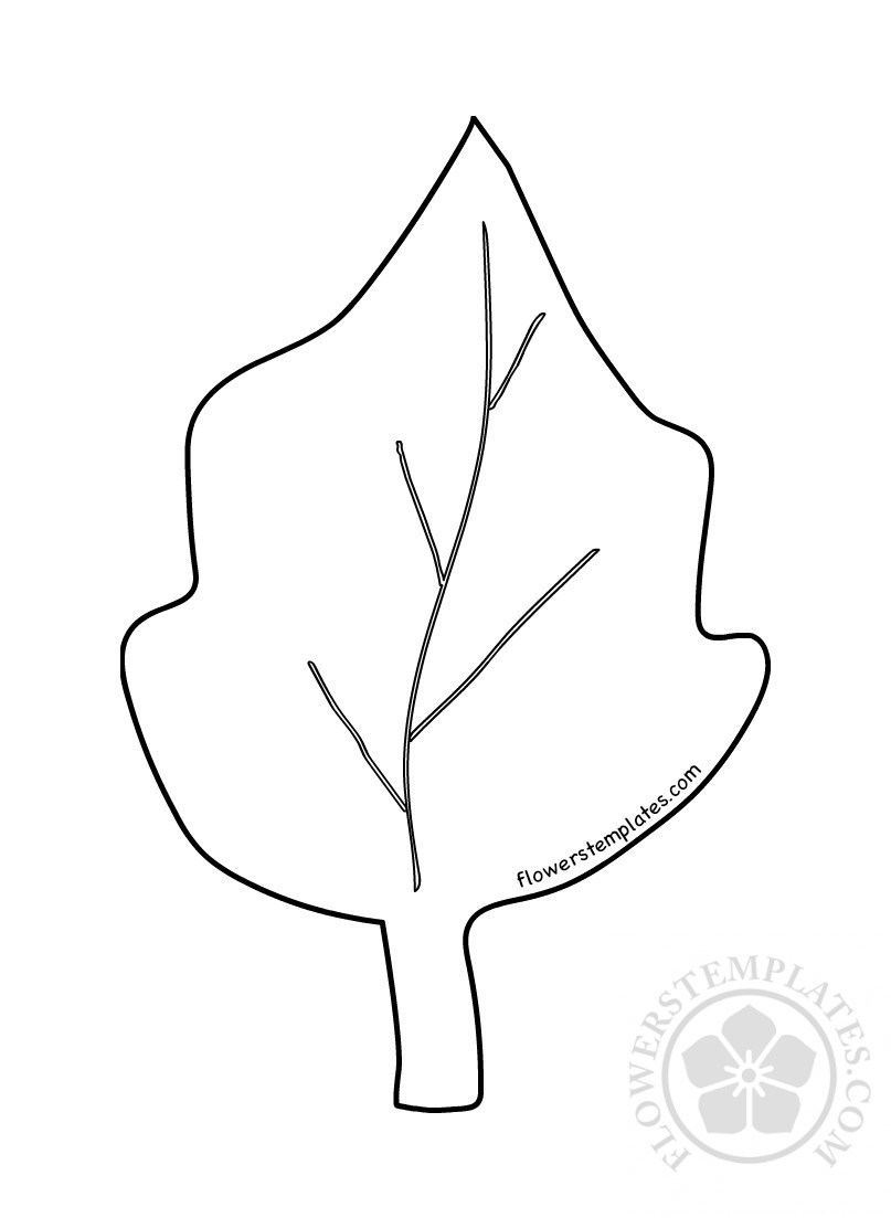 graphic relating to Poinsettia Pattern Printable named Hefty poinsettia leaf template Bouquets Templates