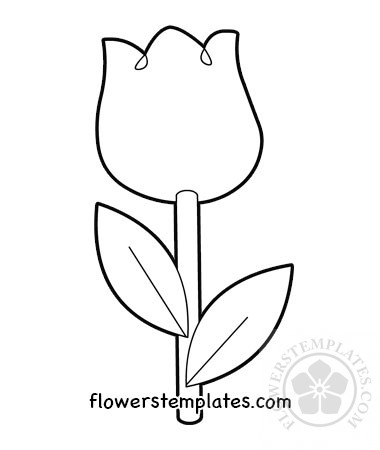 graphic relating to Tulip Template Printable called Basic Tulip Coloring Web site printable Bouquets Templates
