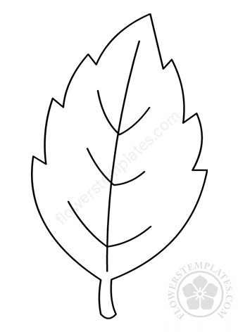 Printable Rose leaf outline | Flowers Templates