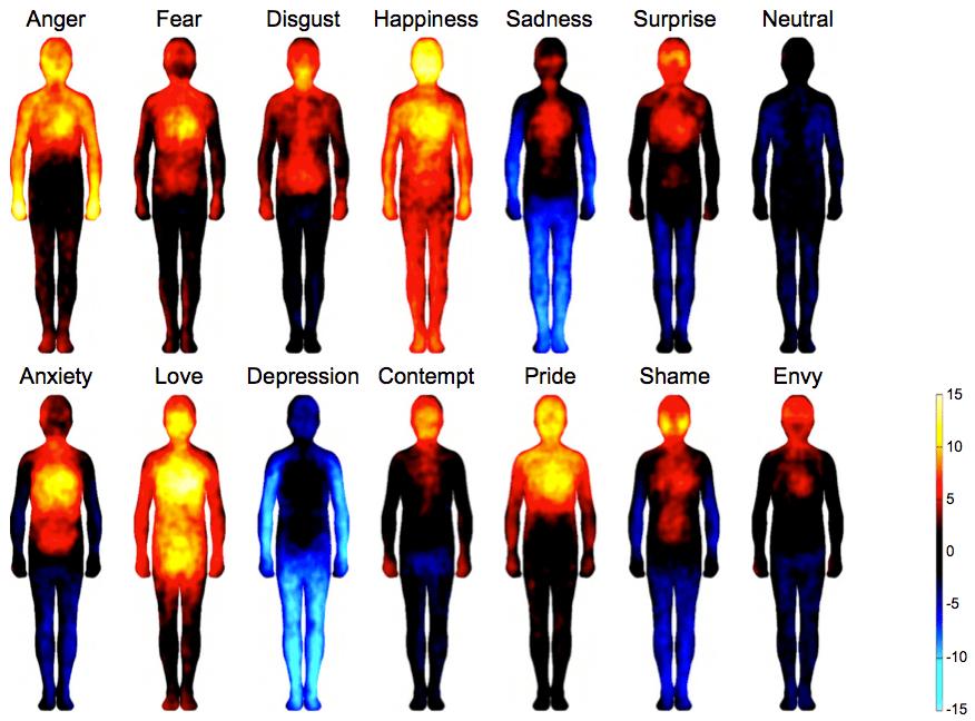 Body maps show where we feel emotion